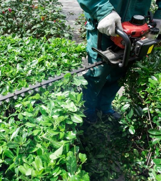 Entretien jardin parcs Rixensart – Tonte pelouse, taille haie Wavre