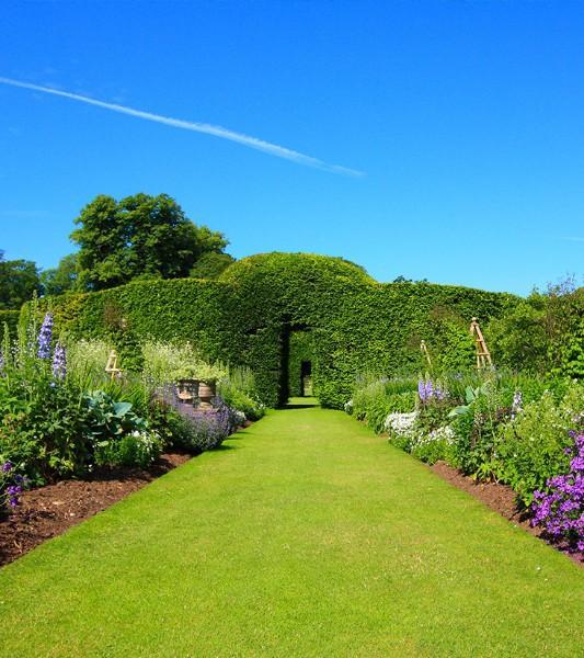 Entretien gazon, jardin, Rixensart, Overijse