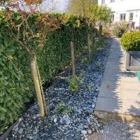 Travaux de ce débuts de saison de votre entrepreneur de jardin en brabant wallon